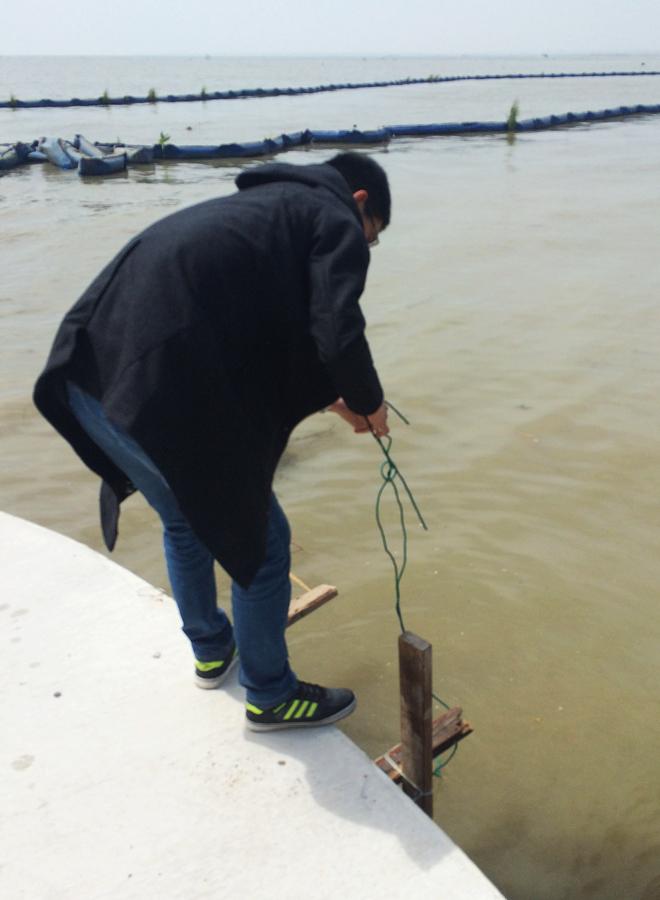 2016年春季太湖(常州段)水质监测的相关动态